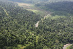 Logged over forest in Borneo -- sabah_aerial_2318