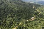 Logging road in Borneo -- sabah_aerial_2321