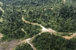 Logging road in Borneo -- sabah_aerial_2323