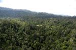 Active logging area in Borneo -- sabah_aerial_2357