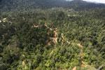 Active logging area in Borneo -- sabah_aerial_2360