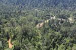 Active logging zone in Borneo -- sabah_aerial_2362
