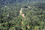 Active logging area in Borneo -- sabah_aerial_2363