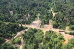 Logging dump in Malaysia -- sabah_aerial_2369