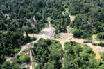 Logging dump in Malaysia -- sabah_aerial_2371