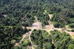Logging dump in Malaysia -- sabah_aerial_2373