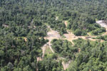 Logging dump in Malaysia -- sabah_aerial_2376