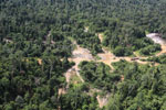 Logging dump in Malaysia