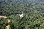 Active logging area in Borneo -- sabah_aerial_2378