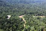 Active logging area in Borneo -- sabah_aerial_2381