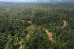 Logging road -- sabah_aerial_2392