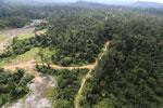 Logging road -- sabah_aerial_2393