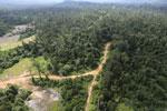 Logging road -- sabah_aerial_2394