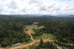 Logging road -- sabah_aerial_2397