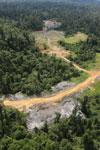 Logging road -- sabah_aerial_2399