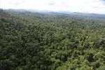 Borneo rainforest -- sabah_aerial_2407