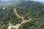 Logging road -- sabah_aerial_2418