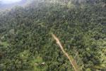 Logging road -- sabah_aerial_2440