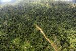 Logging road -- sabah_aerial_2443