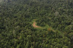 Over-logged forest in Borneo -- sabah_aerial_2448