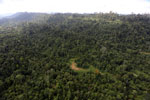 Over-logged forest in Borneo -- sabah_aerial_2449