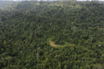 Over-logged forest in Borneo -- sabah_aerial_2451