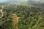 Logging road -- sabah_aerial_2455