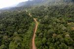 Logging road -- sabah_aerial_2456
