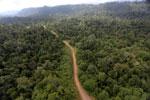 Logging road -- sabah_aerial_2460