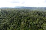 Borneo rainforest -- sabah_aerial_2463