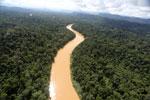 Kinabatangan River -- sabah_aerial_2469