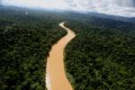 Kinabatangan River -- sabah_aerial_2470