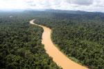 Kinabatangan River -- sabah_aerial_2474