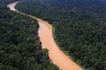 Kinabatangan River -- sabah_aerial_2475