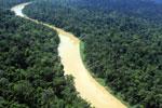 Kinabatangan River -- sabah_aerial_2476