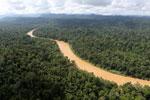 Kinabatangan River -- sabah_aerial_2478