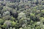 Borneo rainforest -- sabah_aerial_2571