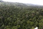 Borneo rainforest -- sabah_aerial_2620