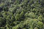 Borneo rainforest -- sabah_aerial_2648