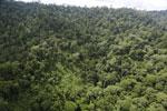 Borneo rainforest -- sabah_aerial_2649