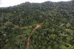 Logging road -- sabah_aerial_2653