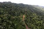 Logging road -- sabah_aerial_2658