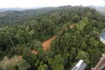 Logging road -- sabah_aerial_2674