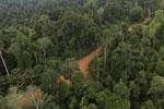 Logging road -- sabah_aerial_2675