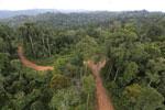 Logging road -- sabah_aerial_2676