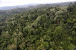 Borneo rainforest -- sabah_aerial_2681