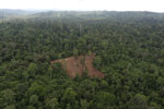 Aerial view of heavily logged rainforest -- sabah_aerial_2709