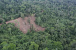 Aerial view of heavily logged rainforest -- sabah_aerial_2710