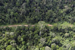 Aerial view of heavily logged rainforest -- sabah_aerial_2721