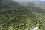 Aerial view of heavily logged rainforest -- sabah_aerial_2728